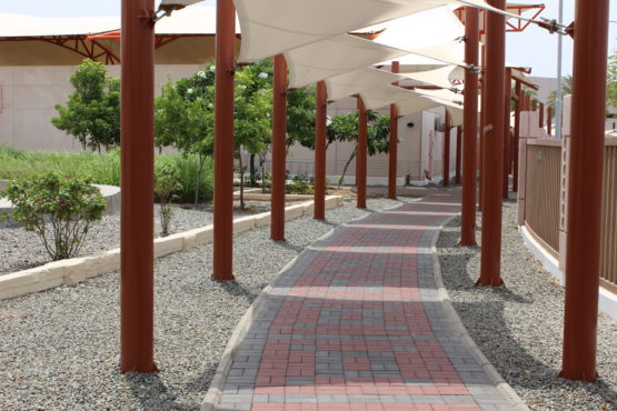 KAUST'S Projects