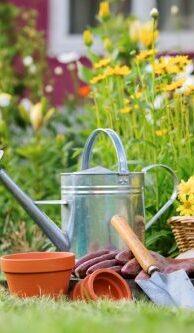01-gardening-vs-landscaping-garden-500x333