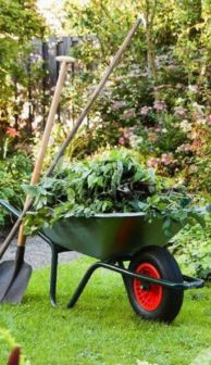 Wheelbarrow-in-Garden-xlarge